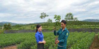 Trung tâm cấp cây giống Đồng Nai